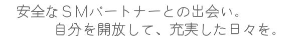 安全なSMパートナーとの出会い(広島・岡山